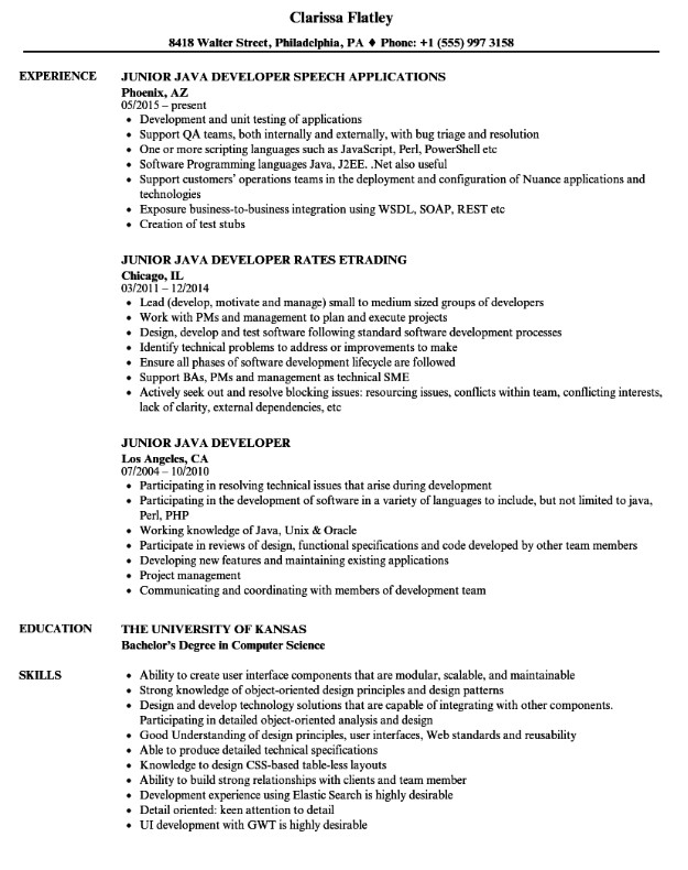 Entry Level Java Developer Resume