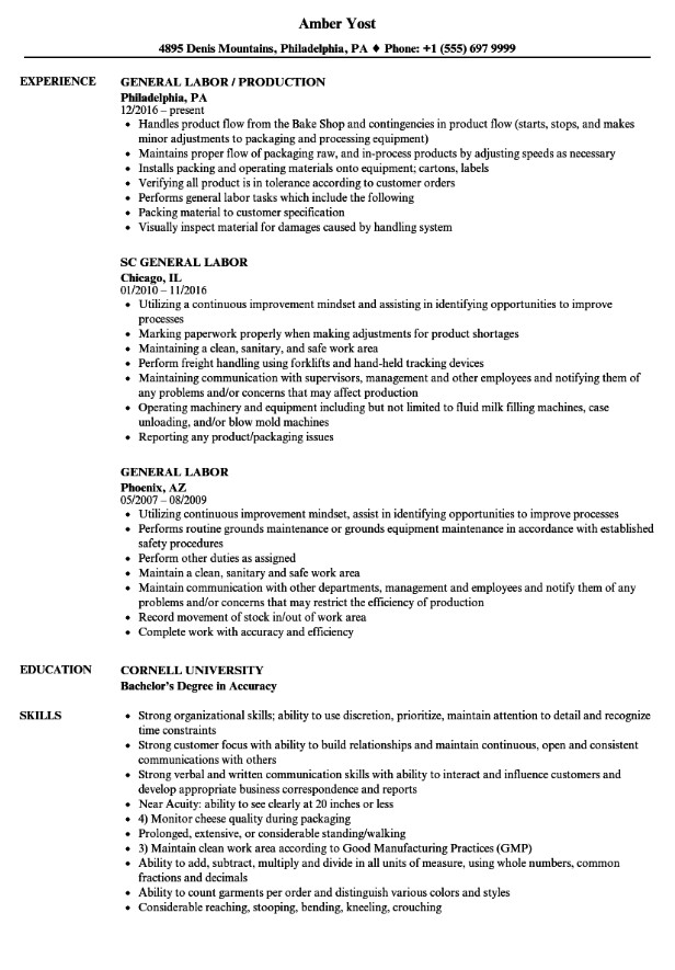 General Labor Resume No Experience