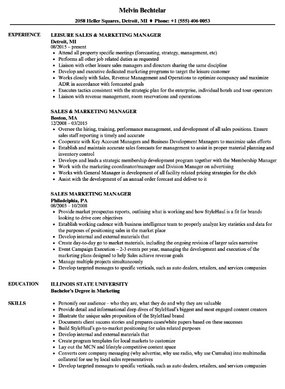 Sales And Marketing Resume Examples